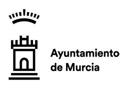 ayuntamiento-murcia-folkpelotas-2
